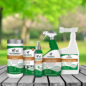 Natural Flea and Tick Control