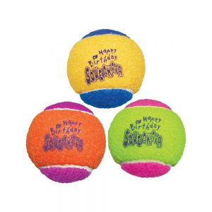 Toy Australian Shepherd Puppy Kong Tennis Balls