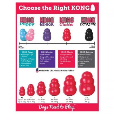 Toy Australian Shepherd Puppy Training Kong Toy