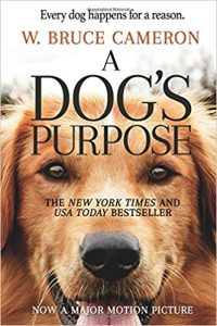 A Dog's Purpose - Toy Australian Shepherd Book Club