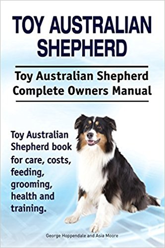 Toy Australian Shepherd Book Club